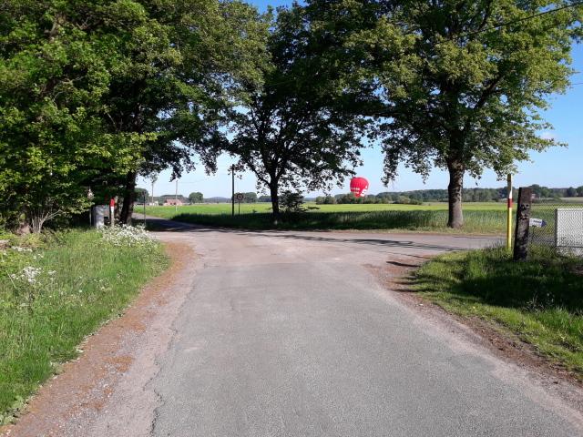 Gelandeter Heißluftballon hinter Bäumen