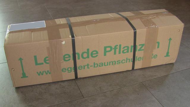 Paketlieferung: Achtung - lebende Pflanzen!