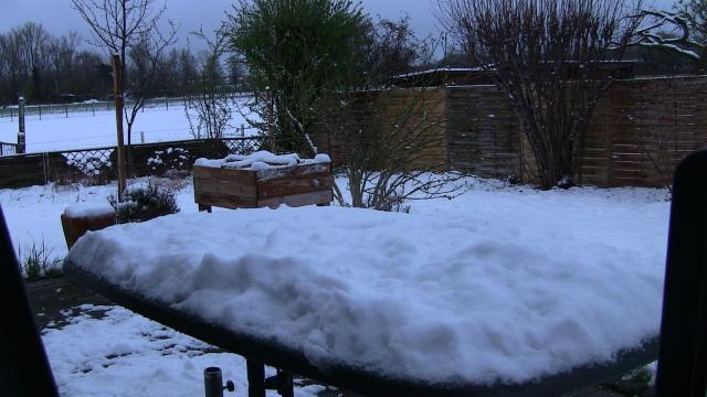 10cm Schnee im Garten