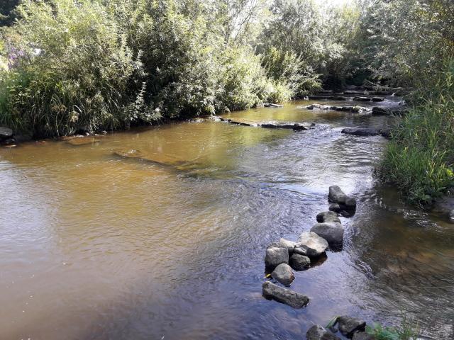 Fluß mit Fischtreppe